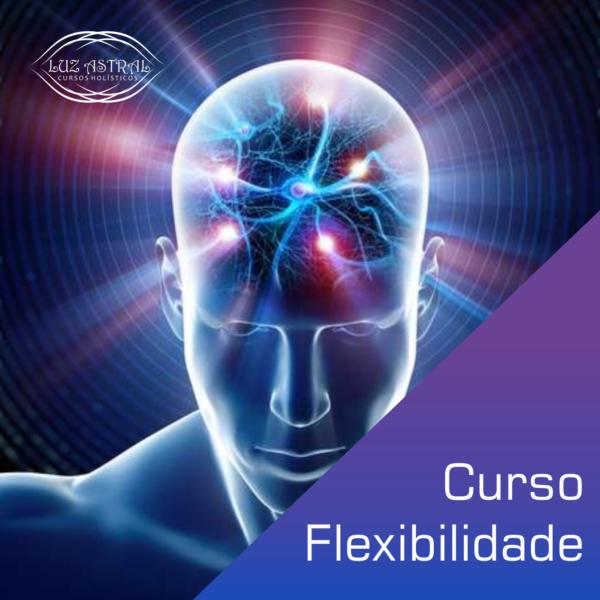 Curso Flexibilidade